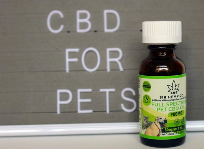 The pet CBD product brand SIR HEMP CO is expanding into the market for cats and dogs: offering CBD for cats and CBD for dogs