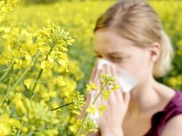 Diet: what to do if you have a summer allergy