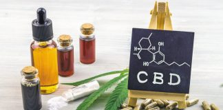 Everything You Should Know About CBD Cannabidiol and THC