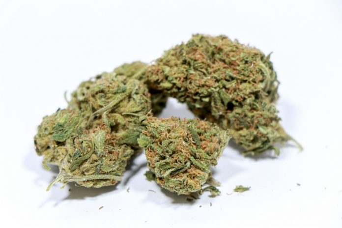 CBD hemp flower can be used to maintain hair care. Learn how to utilize these products here.