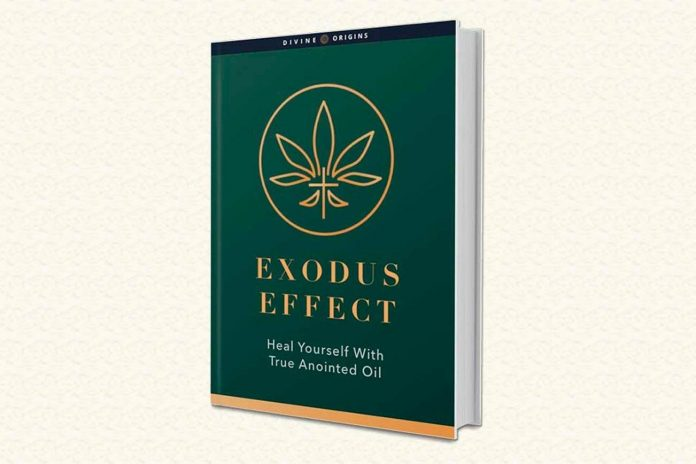 Exodus Effect Reviews: Fraud Or Legitimate?  Is it worth the price?
