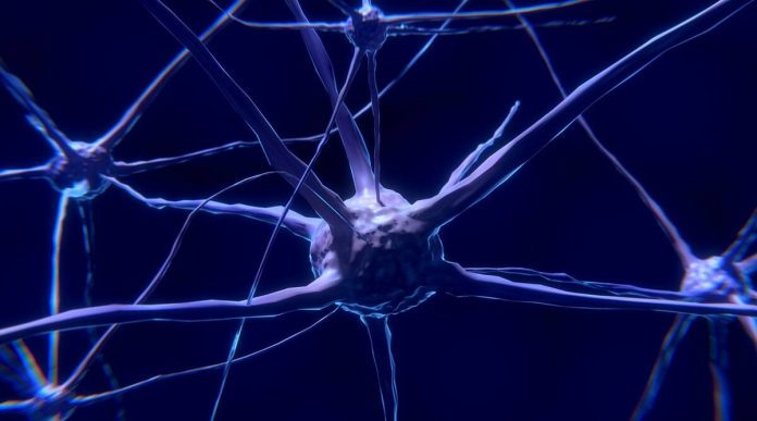 Do you experience a tingling sensation in your body?  Pinched nerves to blame