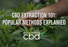 CBD Extraction 101: Popular Methods Explained