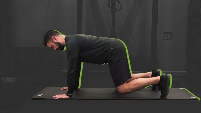 Mit der Bear Plank werden Sie an Ihrem nächsten Bauchmuskel-Tag wild