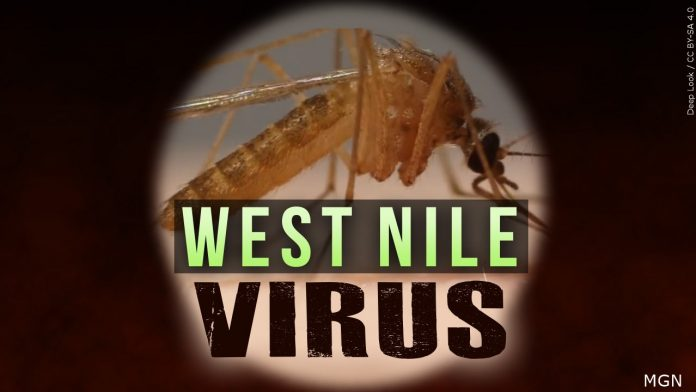 Monsoon season increases the risk of West Nile virus contraction